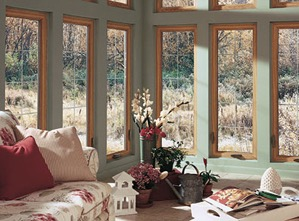 Home Window Replacement Companies Near Me | LEI
